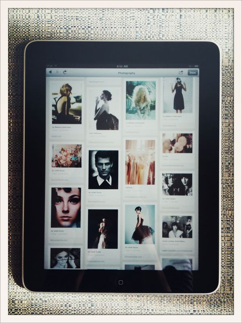 my_pinterest_on_ipad.jpeg.scaled500