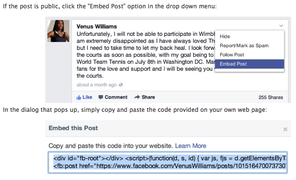 embed post