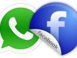 WhatsApp apre alle imprese: sarà possibile contattare i clienti attraverso l'app