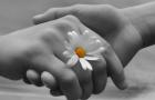 La gentilezza salverà il marketing