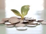 Equity Crowdfunding, una nuova frontiera per lo sviluppo