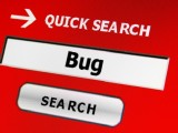 Bug Bounty e Open Source
