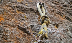 knot-1110536_1920