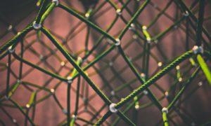 Reti e networking: la digital transformation passa dalla collaborazione